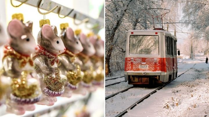 Лучшие фото этой недели: мышиное царство в Нижнем Новгороде и уютная тёплая зима