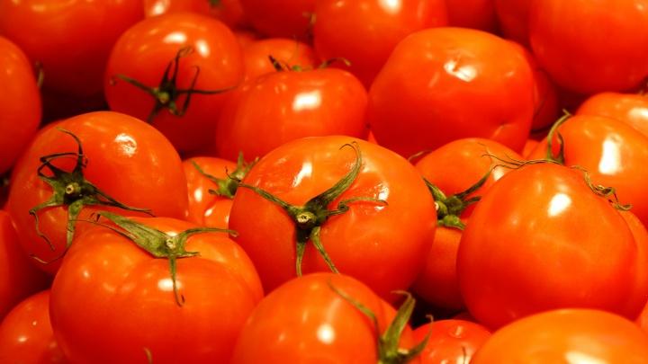 В Волгоградской области гуляют в костюмах помидора и меряются весом овощей