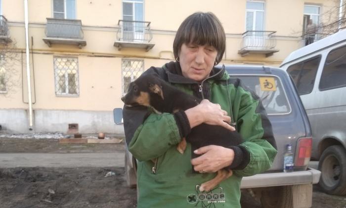 Двухмесячный щенок провёл четыре дня в коллекторе
