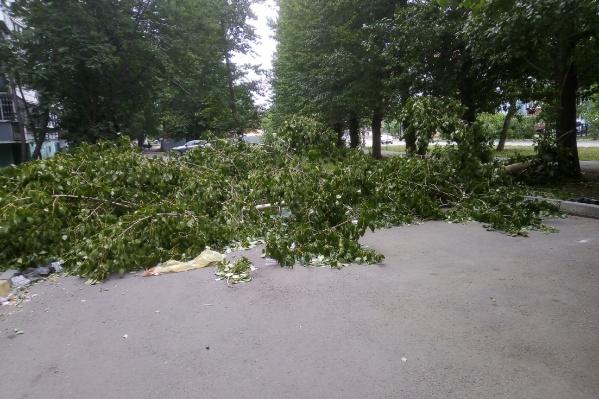 Несчастный случай произошёл у дома №24 на улице Солнечной