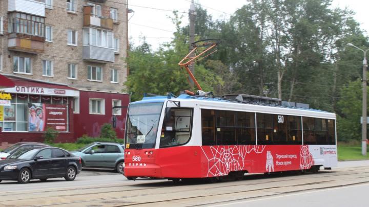 В Перми трамваи начали обклеивать как автобусы — в едином фирменном стиле