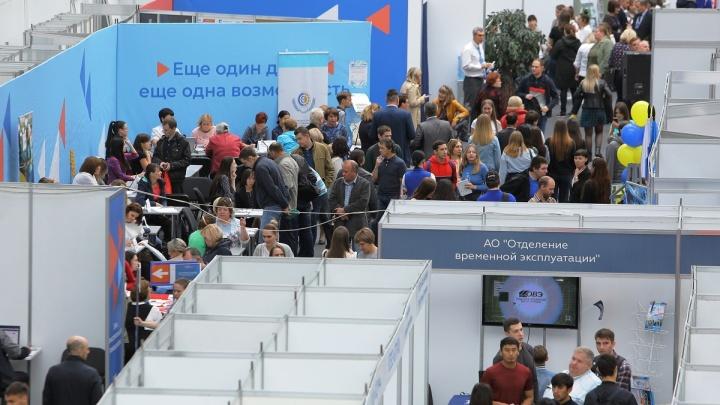 Территория кадровых решений, открытая для всех: в Красноярске прошла региональная ярмарка вакансий