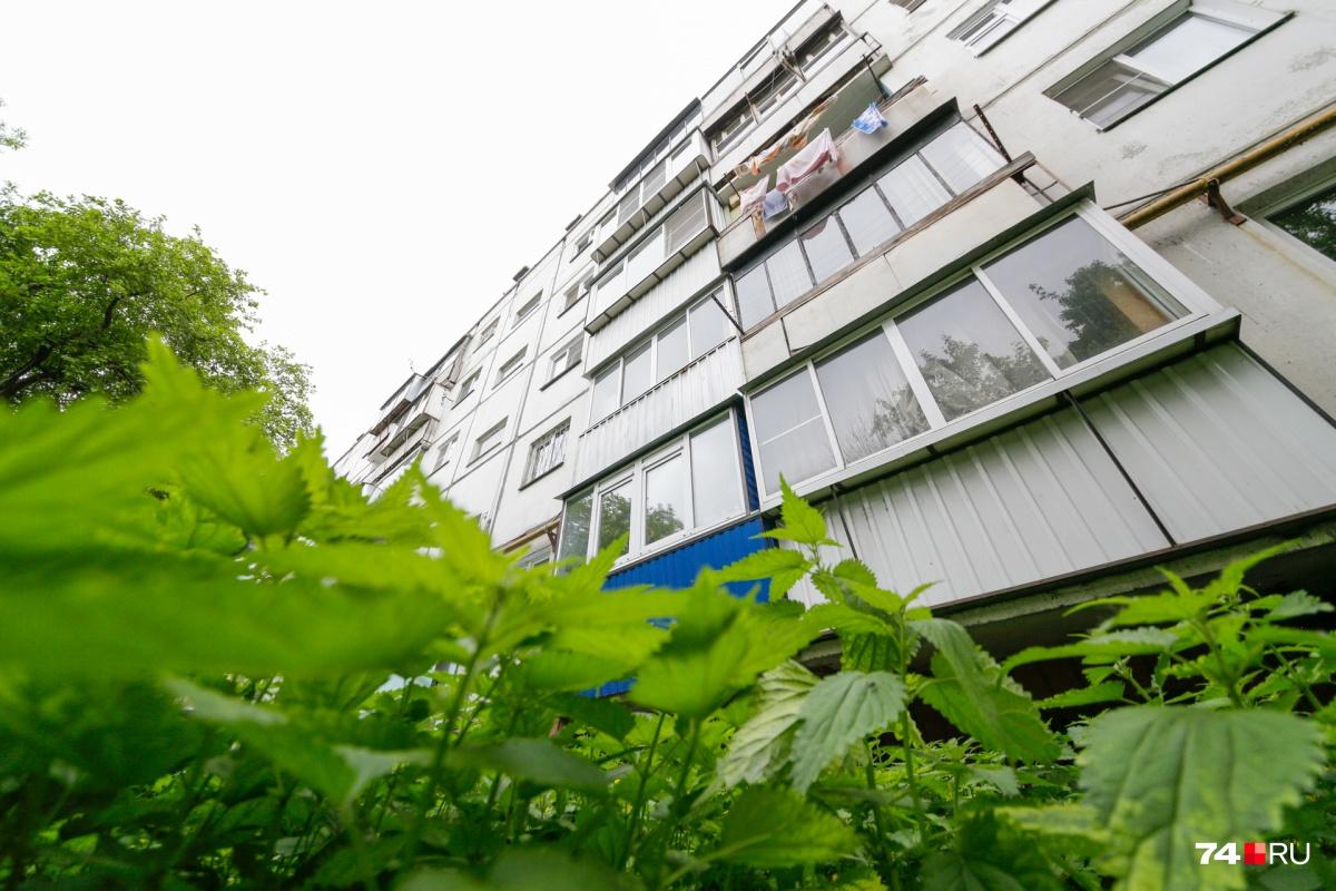 Территория под окнами дома №16 на Масленникова заросла крапивой