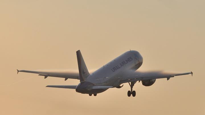 Самолет «Уральских авиалиний», наматывавший круги над Екатеринбургом, напугал горожан