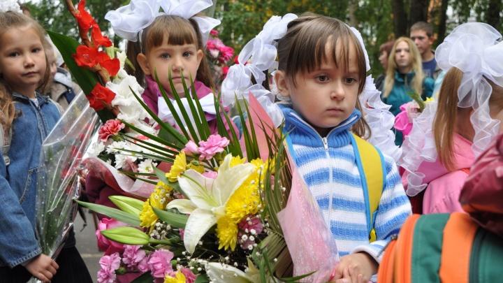 Опрос 29.RU: кто, на что и сколько собирает в школах Архангельской области