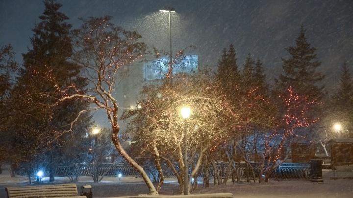 Холодно и снежно: в Новосибирск идёт похолодание с метелями