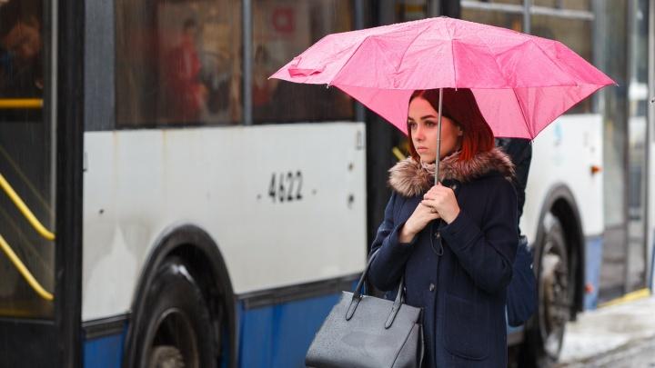 Дам проверят на прочность: к главному женскому дню волгоградцев ждет похолодание