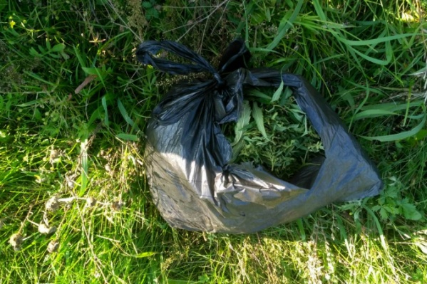 В пакете велосипедиста было 200 граммов марихуаны