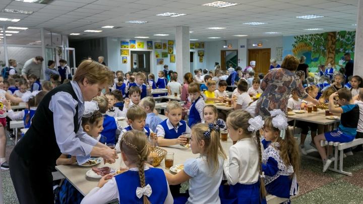 Общественник предложил красноярским депутатам кормить детей младших классов за деньги из бюджета