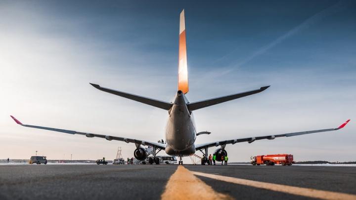 Диско-шар и багажное кунг-фу: как работают наземные службы челябинского аэропорта
