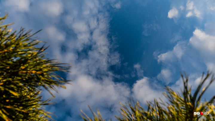 В Прикамье потеплеет до +10 градусов. Публикуем прогноз погоды на выходные