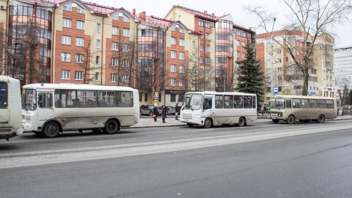 «Для удобства жителей Экономии»: на архангельские маршруты выйдут три дополнительных автобуса