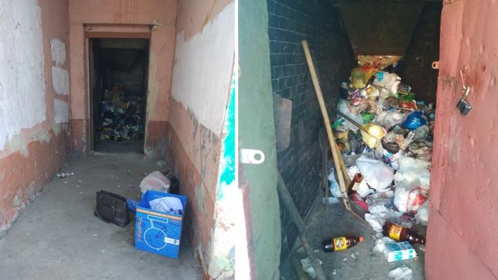 «Мухи огромные и крысы табуном»: в жилом доме в Ярославле накопилось несколько этажей мусора