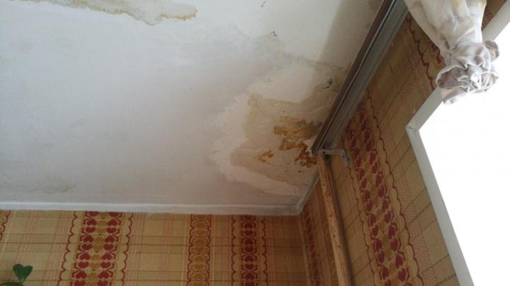 Куда жаловаться, если крышу не чистят от снега и квартиру топит талой водой? Инструкция для тюменцев