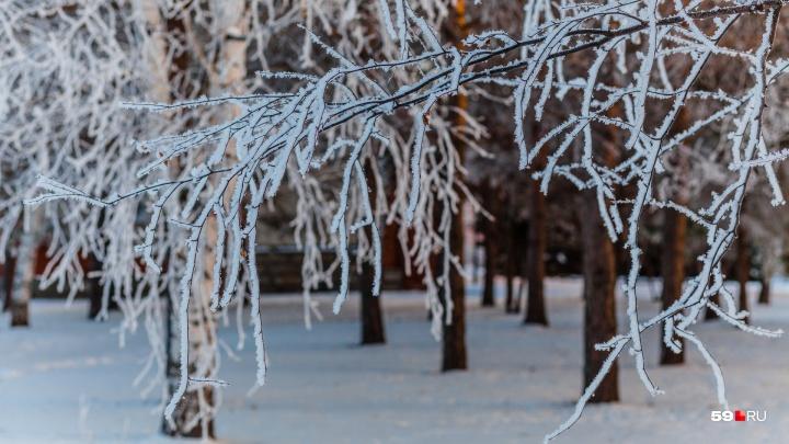 Сильная изморозь в Прикамье продолжается. МЧС предупреждает о неблагоприятной погоде