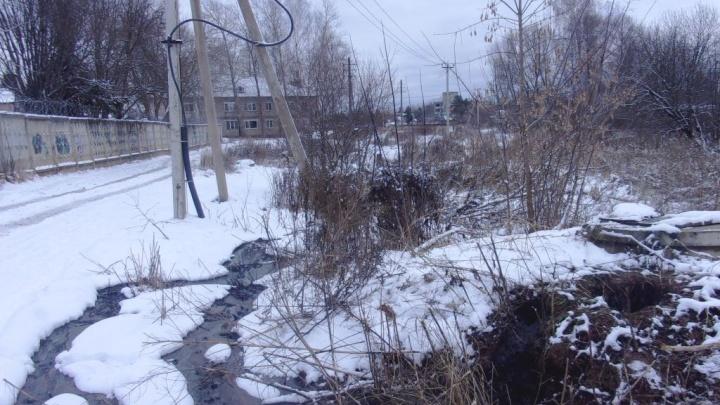 В Рыбинске крупное предприятие сливало канализацию в ручей