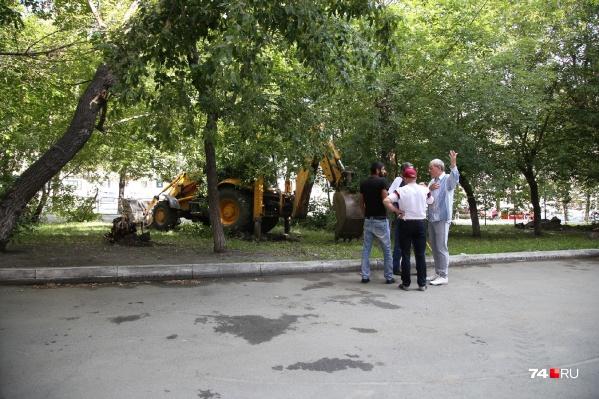 Жильцы пятиэтажки ругаются с рабочими и пишут письма чиновникам, чтобы защитить деревья от вырубки