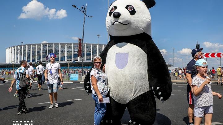 Чемпионат мира по футболу глазами волонтера: «Одно из правил я нарушил, давая тебе интервью»