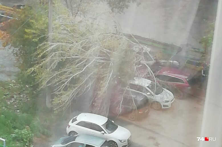 Это фото двора на улице Мамина, 21б