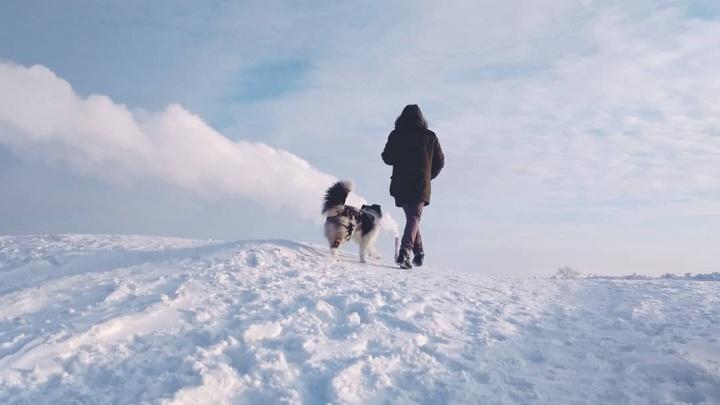 С другом не страшны холода: 10 фотонаблюдений северян, после которых захочется на зимнюю прогулку