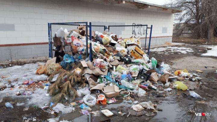 «Губернатор их накажет»: в Волгограде за два месяца так и не убрали мусор из центра города