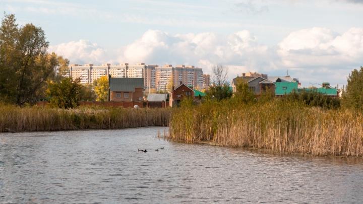 Территорию возле озера Дубовый Ерик и «Волгаря» перепланирует бизнесмен из Новосибирска