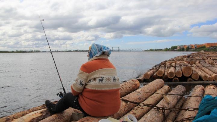 С конца апреля в части районов Поморья запретят ловлю рыбы сетями и неводами