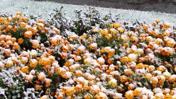 Зима близко: Башкирию накрыло снегом