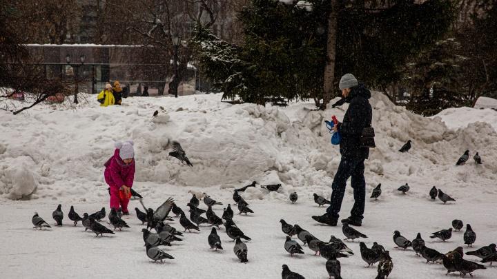 Холода отступают. Синоптики рассказали, каких сюрпризов ждать от погоды до конца рабочей недели