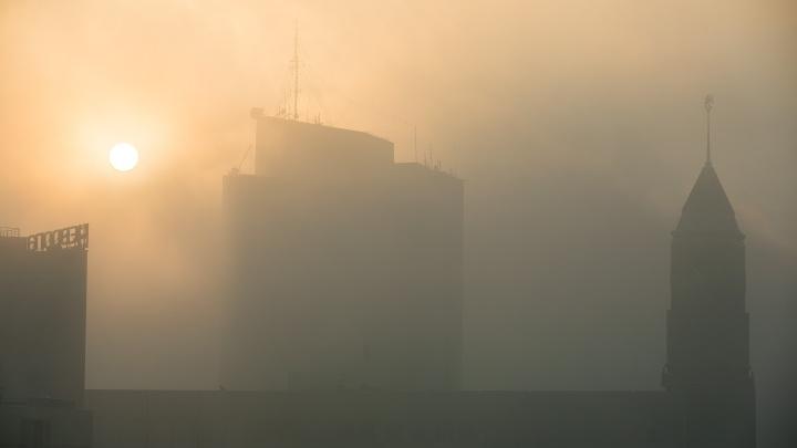 «Вот это разница!»: сравниваем данные по загрязнению воздуха от волонтеров, ученых и чиновников