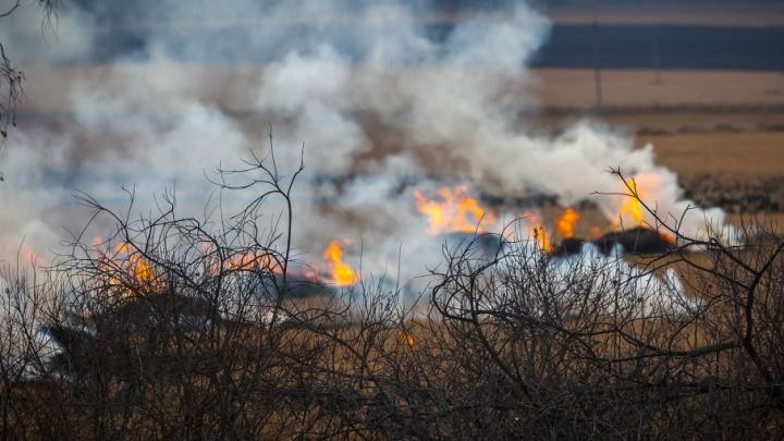 Ссора с огоньком: южноуралец поджег сено своей знакомой