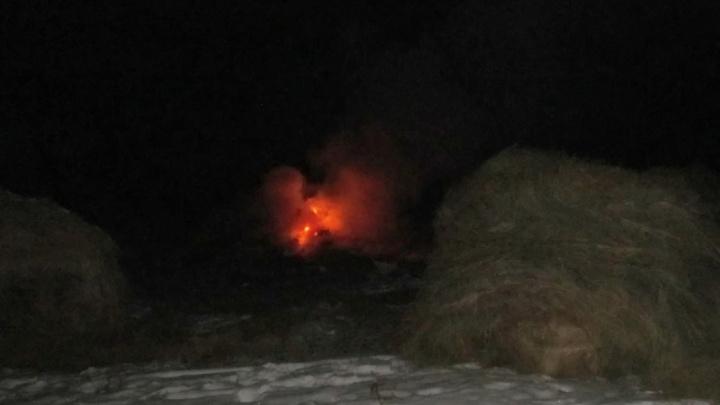 Житель села Митино спалил соседке сено из-за обиды