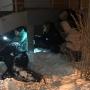 «Огнестрельное ранение»: на северо-западе Челябинска расстреляли собаку