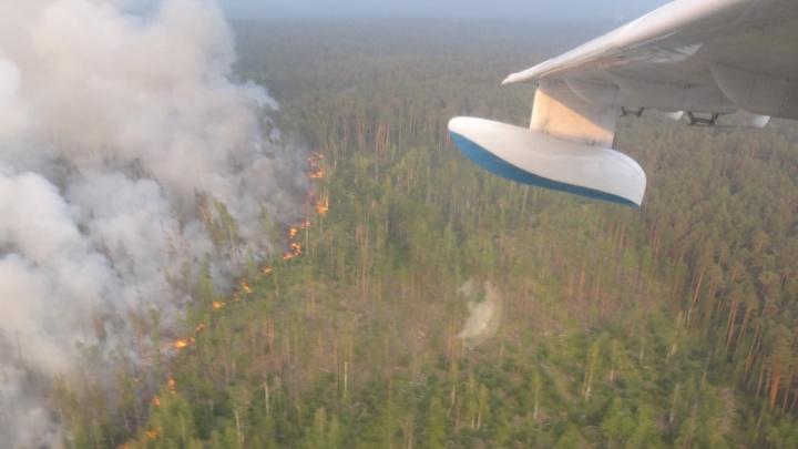 Самолеты-разведчики из Челябинской области приступили к поиску очагов пожаров в Сибири