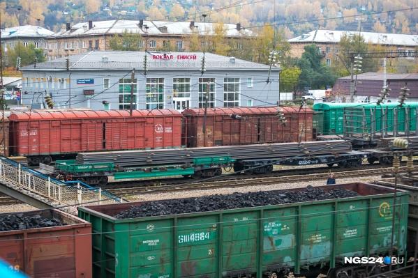 Сбитое поездом животное обнаружили работники станции