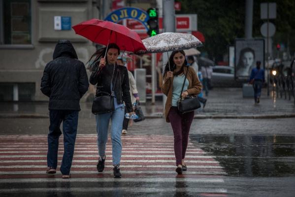 В ближайшие дни в Новосибирске будут идти дожди, а в пятницу ожидается и мокрый снег