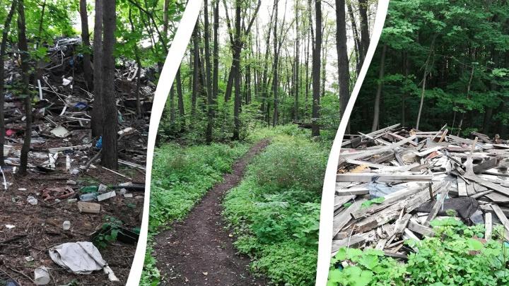 «Превратили все в помойку»: жители Уфы потребовали от властей спасти Кошкин лес