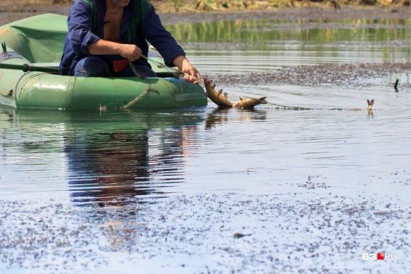 Добывать рыбу с помощью сетей запрещено