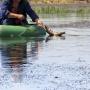 «Девять лещей, чехони и караси»: жителя Самарской области будут судить за незаконную рыбалку