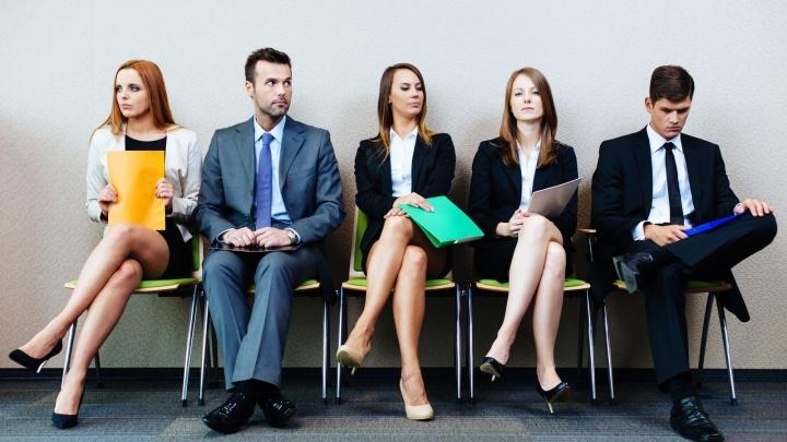 Охота на работу: архангельские компании представили топ вакансий лета