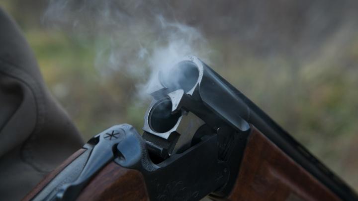 Автомобиль Mazda 3 и 200 тысяч рублей за двух убитых в Зауралье косуль придётся отдать браконьерам