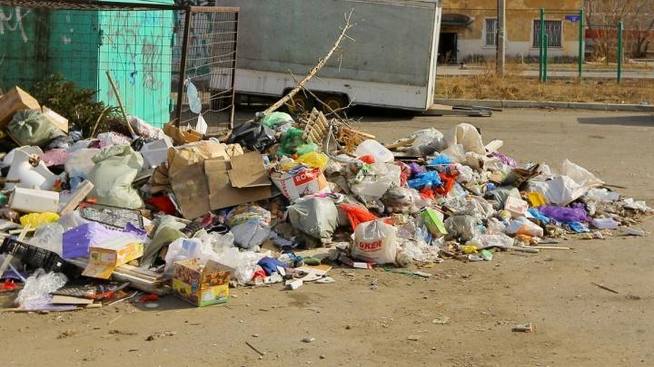 Депутаты предложили штрафовать жителей и коммерсантов за мусор в неположенных местах