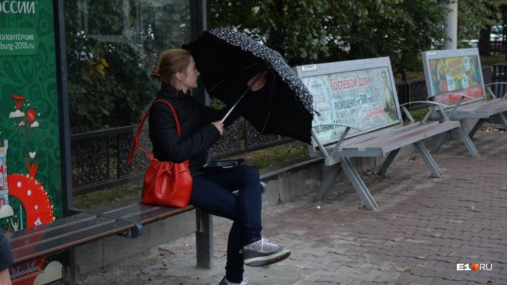 Ждем гололед: последняя неделя октября в Екатеринбурге будет холодной и дождливой
