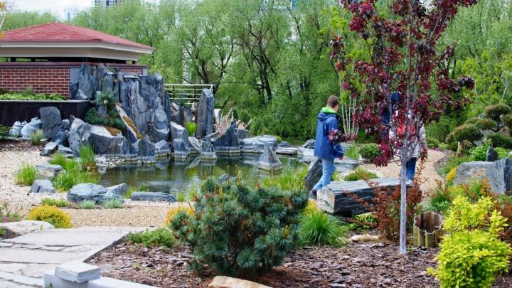 Такого у нас еще не было: екатеринбургские бизнесмены разбили у Исети ВИП-сад с камнями и водопадом