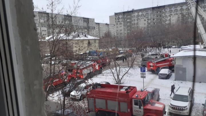 Виновник пожара на Пермякова выращивал коноплю