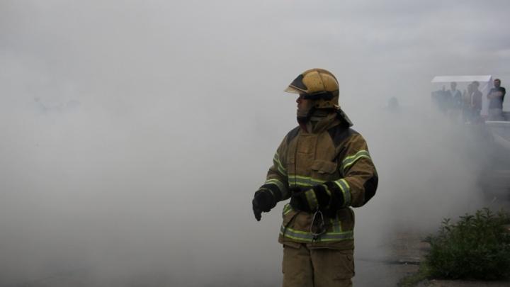 Под Северодвинском выгорело 18 гектаров леса