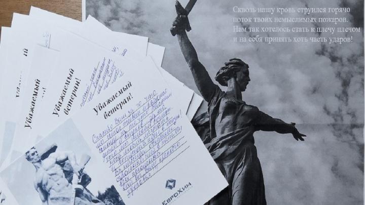Благодарность и гордость за великий подвиг: молодые котельниковцы благодарят героев Сталинграда