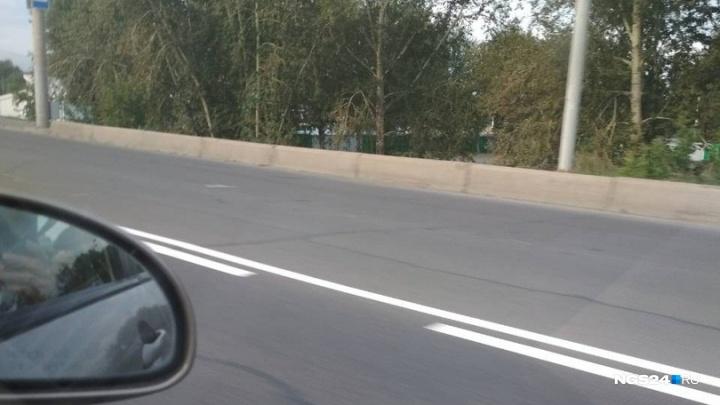 На Октябрьском мосту начали рисовать выделенную полосу для автобусов