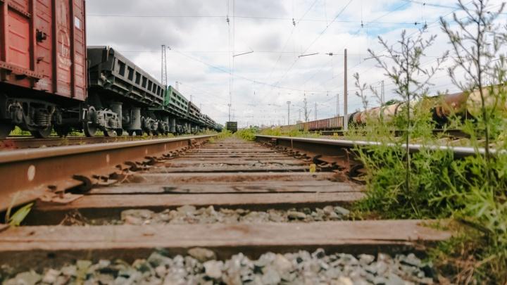В Самаре грузовой поезд сбил насмерть женщину