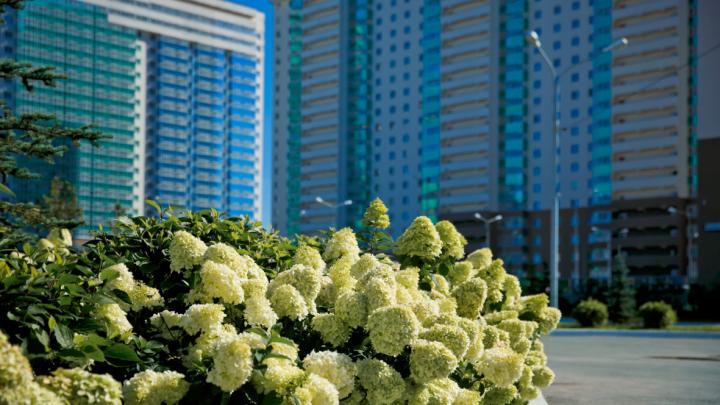 «Мы не будем поднимать цены»: застройщик Юго-Запада продлил спецпредложение на квартиры ещё на месяц